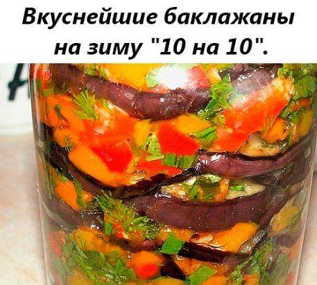 Баклажаны «10х10»