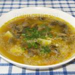 Картофельный суп-пюре с говядиной и ячневой крупой Из картошки