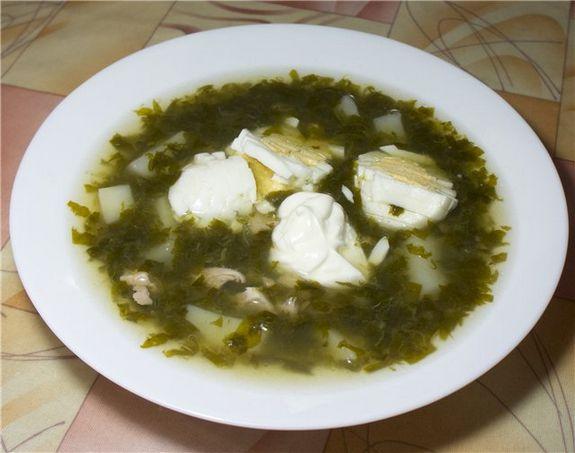 Щавелевый суп или зеленые щи? Первые блюда Супы