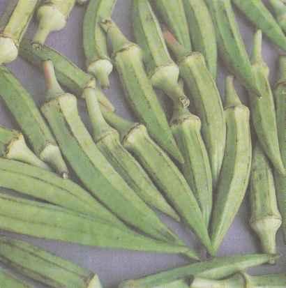 Бамия (окра): описание, сорта, выращивание, использование Польза продуктов Пряности и приправы