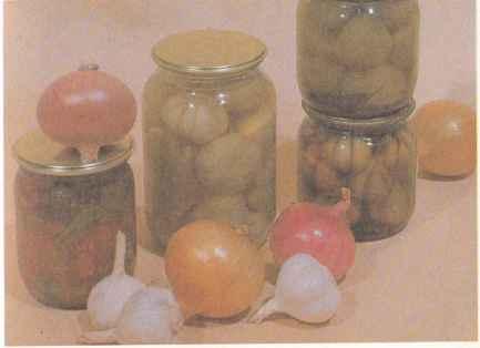 Выращивание чеснока, сорта чеснока и его свойства