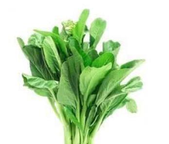 Выращивание горчицы листовой, ее использование Польза продуктов Пряности и приправы