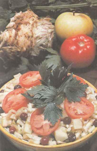Выращивание сельдерея, сорта сельдерея, его свойства и использование Польза продуктов Пряности и приправы