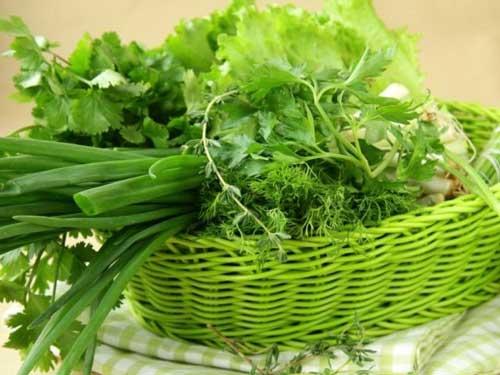 Замораживание зелени пряных растений