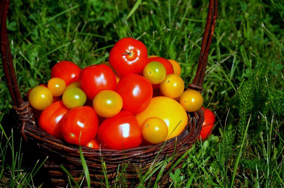 Натуральные продукты питания: правила хранения